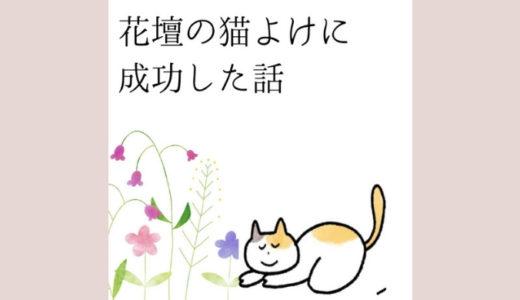 花壇の猫よけに効果絶大!トウガラシや針金など、我が家の対策をまとめて紹介