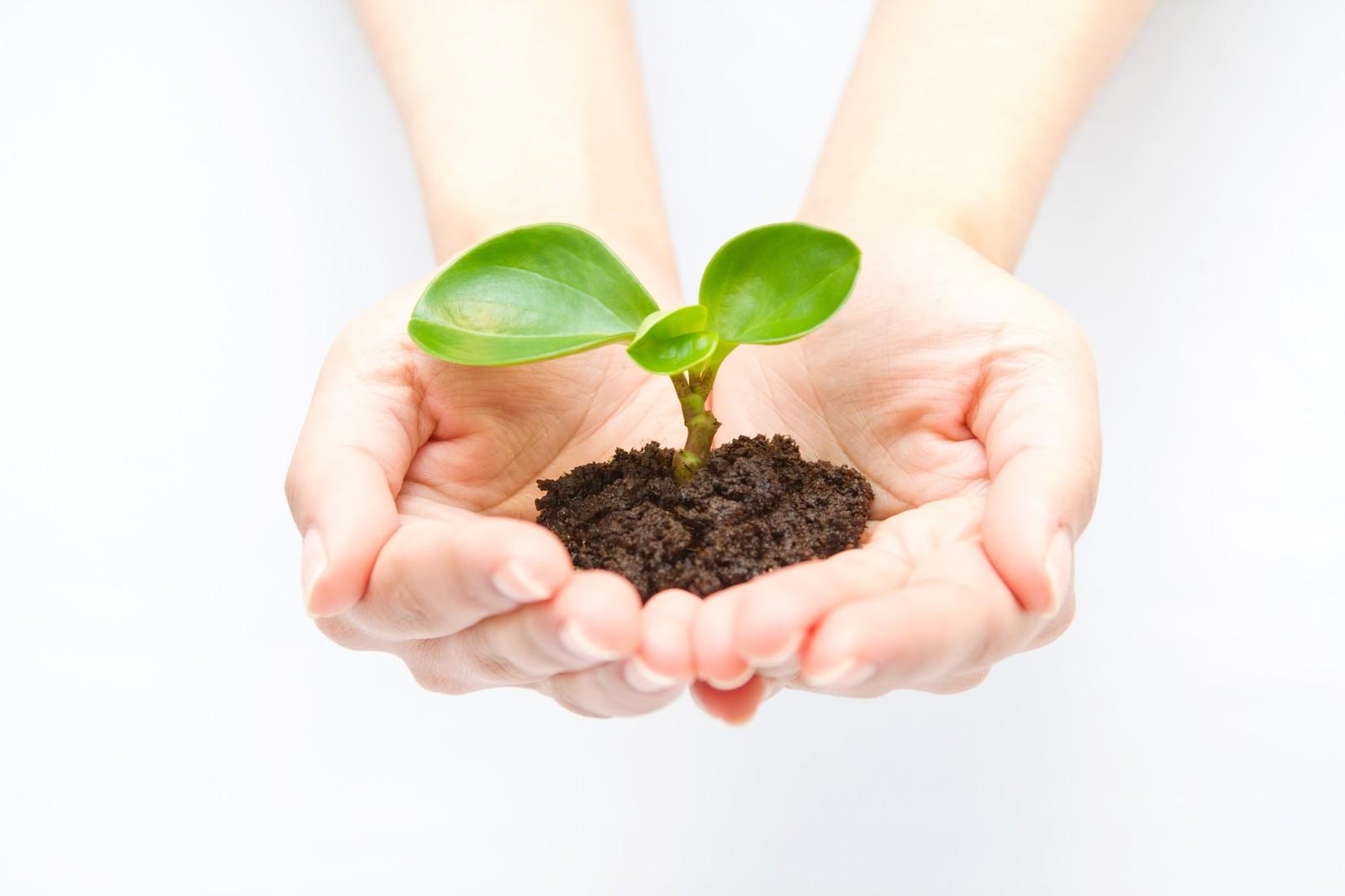 生ゴミから肥料を作る