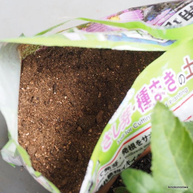 挿し芽・種まき用の土 100円ショップ