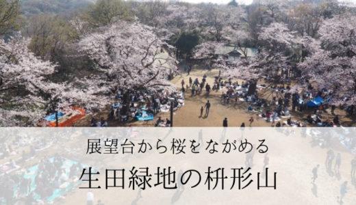 桜が見事なお花見スポット 生田緑地の枡形山(川崎市)