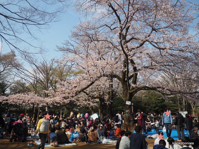 生田緑地 枡形山の桜