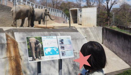 4才と行く多摩動物公園をレポート!回り方のコツも紹介