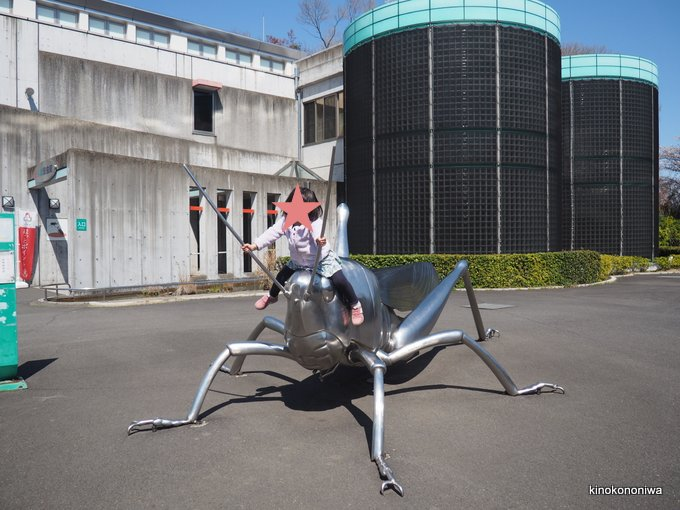 多摩動物公園の昆虫園
