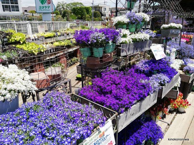 ザ・ガーデン本店 ヨネヤマプランテイション
