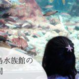 子連れで行く新江ノ島水族館 我が家の所要時間を紹介
