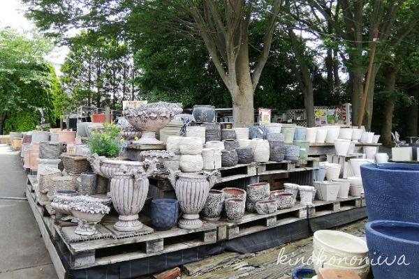 木村植物園の植木鉢