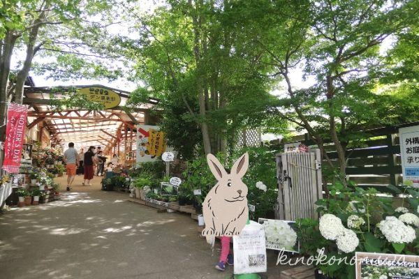 木村植物園入り口