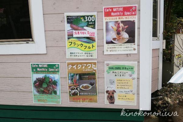 木村植物園カフェ