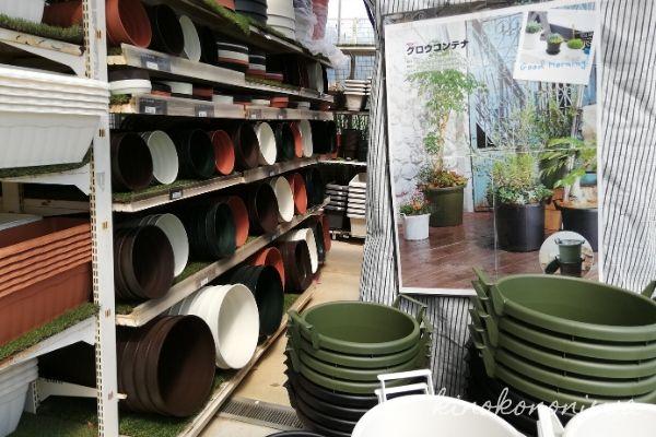木村植物園店内