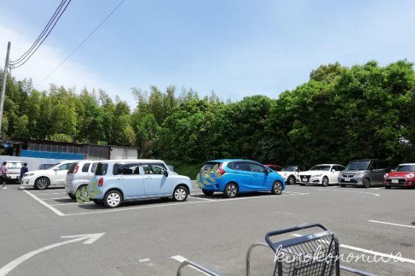 木村植物園駐車場