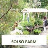 園芸店というより植物園!とにかくおしゃれなSOLSO FARMソルソファームへ行ってきた