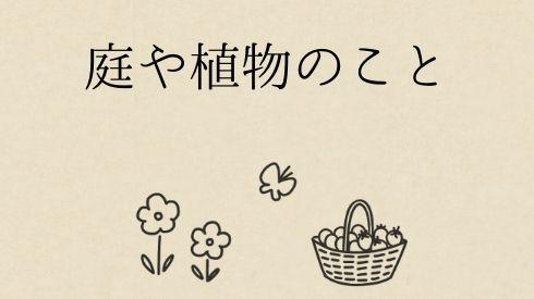 庭や植物のこと
