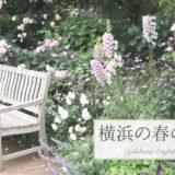 横浜イングリッシュガーデン訪問!春バラ時期はまるで夢の世界